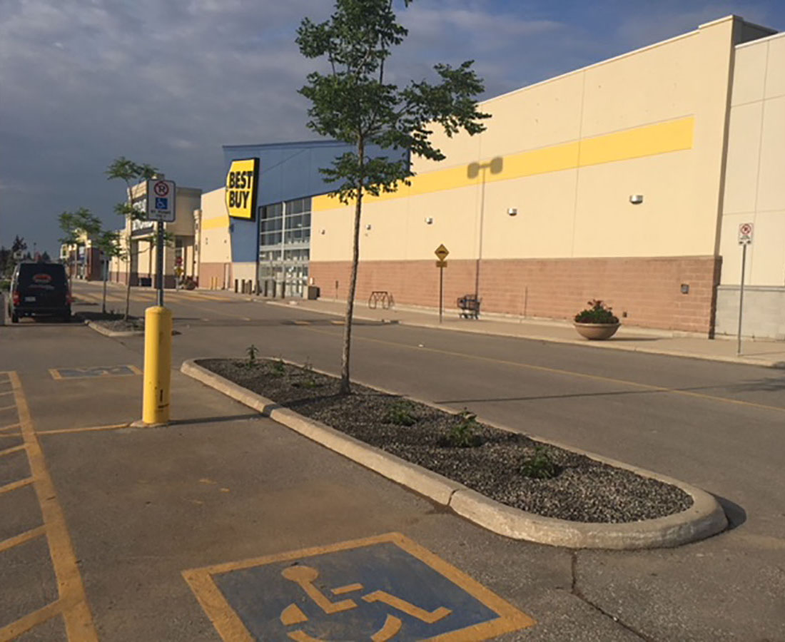 Parking Lot & Landscape Maintenance
